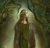 .Morrowind