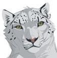 Lynx-meoi