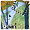 dank autumn