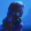 EffieL