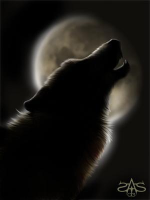 С волками жить по волчьи выть