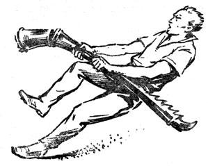 Задняя нога