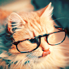 redhead_cat