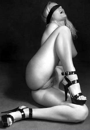 Галереи эротической фографии фото 421-131