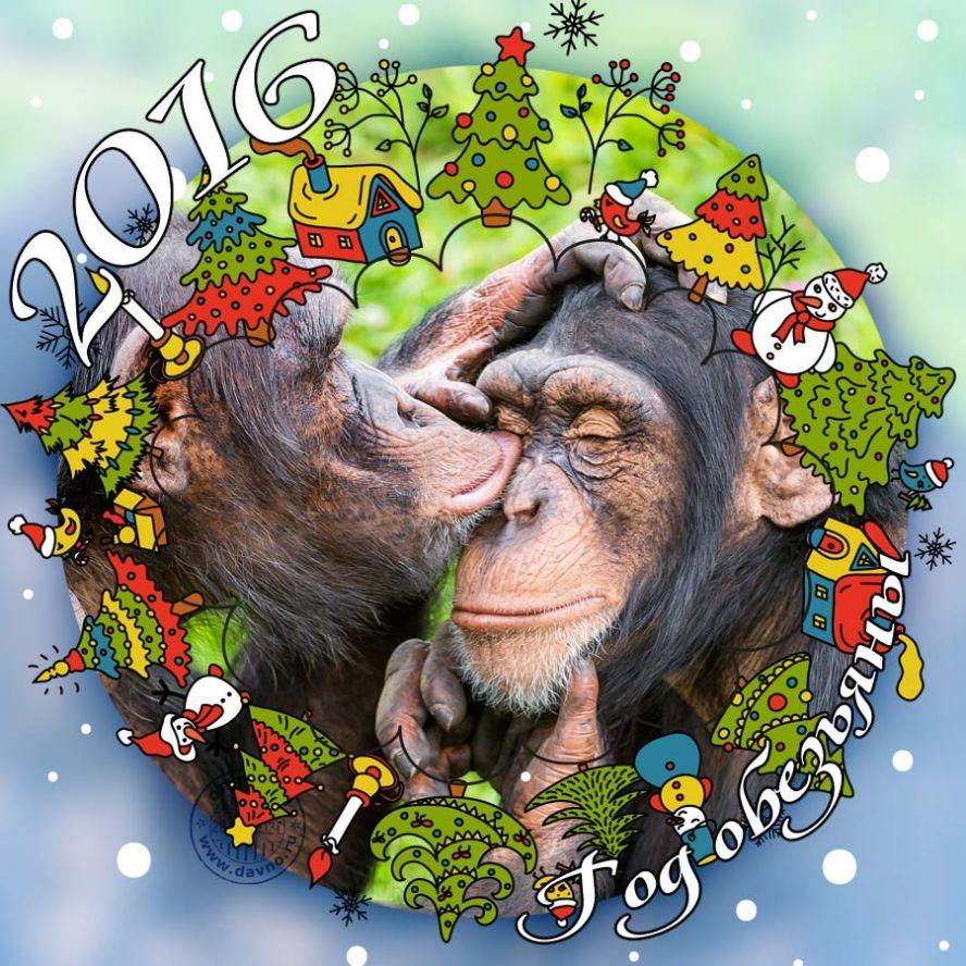 Открытка с обезьяной с новым годом