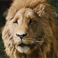 Каннский Лев