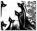 White_Cat906