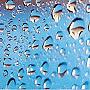 гуляющий под дождем