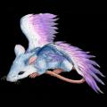 Летучий Крыс