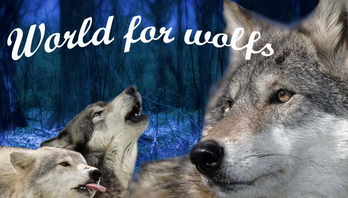 Мир для волков волчиц и маленьких