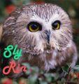 Sly Rin