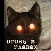 .Твоя Бывшая Кошка