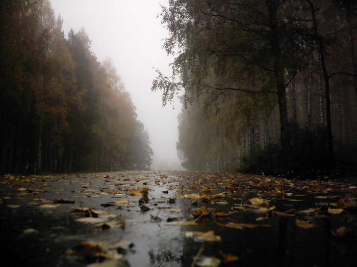 http://static.diary.ru/userdir/2/5/3/9/253993/42696085.jpg