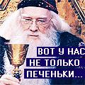 Орден_Феникса