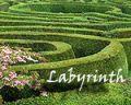 lorien-garden