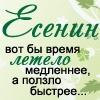 Intro Vert