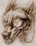 Wolfhard
