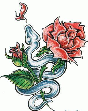 marine logos