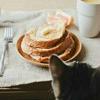 Яснополянский кот