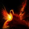 Reviving Phoenix
