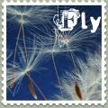 Skyfancy