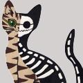 Quantum_Cat