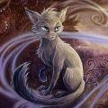 Cat Ramar N.