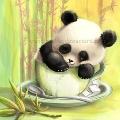 Мятная панда