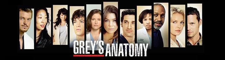 Greys anatomy s06e01