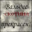 Крылатый_Ёж