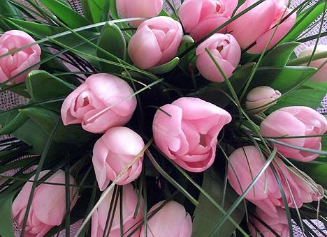 Фото поздравление с днем рождения цветы