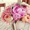 cvetok_leta