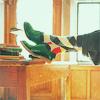 адвокат сиамской кошки