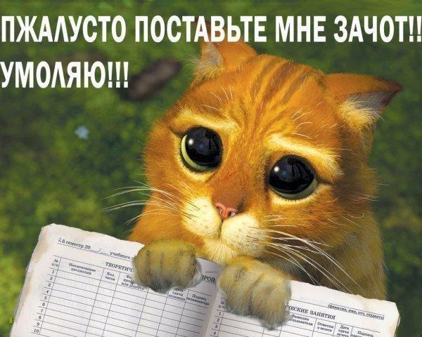 http://static.diary.ru/userdir/2/8/1/8/281841/50039520.jpg
