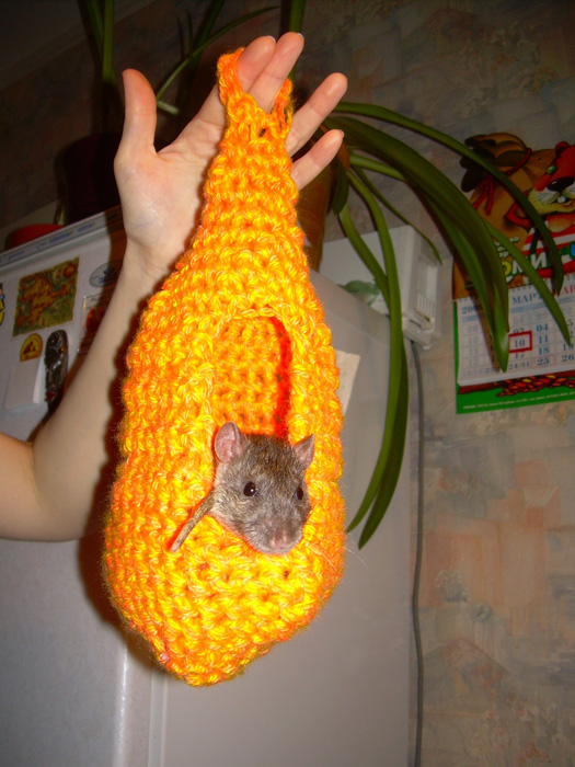 Вязаный гамак для крысы своими руками 94