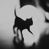 De chat noir