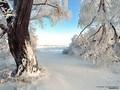 Времена года - Зимушка-Зима