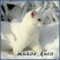 muxoe_kuco