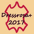 fandom Dressrosa+ 2017