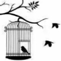 doves_loft