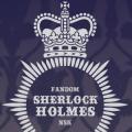 Holmesless Network