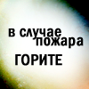 Дьявольская летучая креветка [DELETED user]