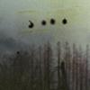 небо над проводами [DELETED user]