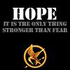fandom Hunger Games 2014