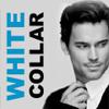 fandom White Collar 2012