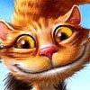Alex Cats