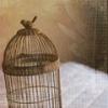 птица неперелетная