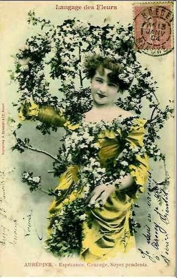 Язык цветов старинные открытки 83