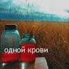 .:Placebo J:.