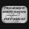 _солнечное_за_../